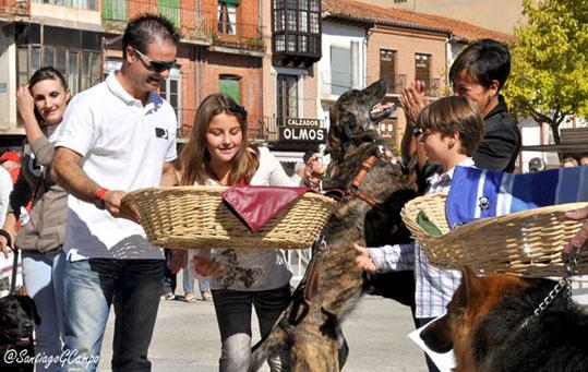 Un miembro del Jurado entrega un lote de productos a los dueños de uno de los perros ganadores.